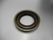 Rear Pinion Seal